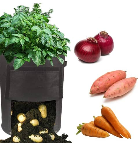 Growsun 2 Pack 10 Gallon Fabric Potato Bags Grow Pots