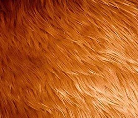 Fake Long-pile Fur Mongolian-Dark Camel Fabric