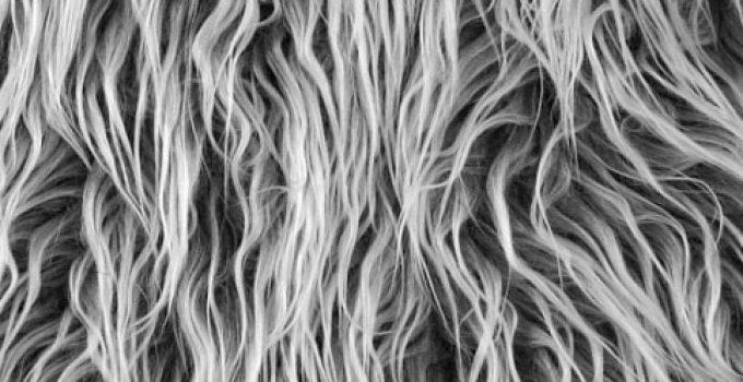Shannon Fabric Grey Frost Faux Fur Mongolian Fabric